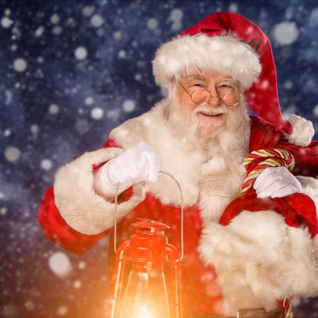 Father Christmas at Thrift Farm